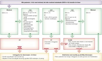 Figur 1. Skandinaviske retningslinjer for håndtering av voksne med minimale, lette eller moderate hodeskader. Flytskjemaet er opprinnelig publisert i Tidsskrift for Den norske legeforening 2013; 133: 2342-3.