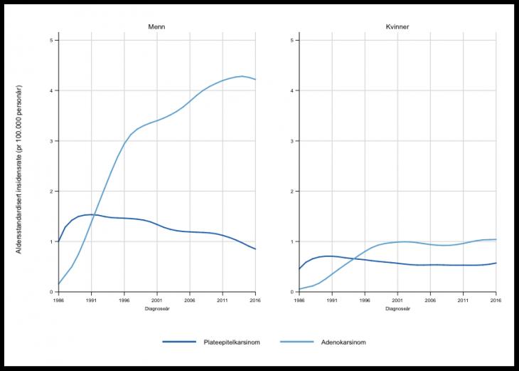Figur 1. Forekomst (insidensrater)av spiserørskreft fordelt på plateepitel- og adenocarcinom for menn og kvinner i perioden 1980-2016 (figur fra Krefregisterets årsrapport (2))
