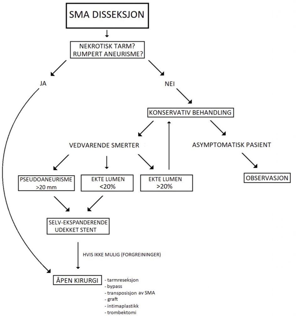 Figur 2: Flytskjema for klinisk håndtering av akutt disseksjon i arteria mesenterica superior.