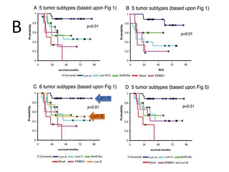 Figur 5. B. Prognostisk informasjon om de 5 molekylære subgruppene med Luminal A som den subgruppen med god prognose og basal type med svært dårlig prognose. Delfigur C demonstrer at Luminal A (Lum A) cancerene (blå pil) og luminal B (Lum B) cancerene (orange pil) er begge er østrogen reseptor positive men har svært forskjellig prognose. (Gjengitt med tillatelse av PNAS [5]).