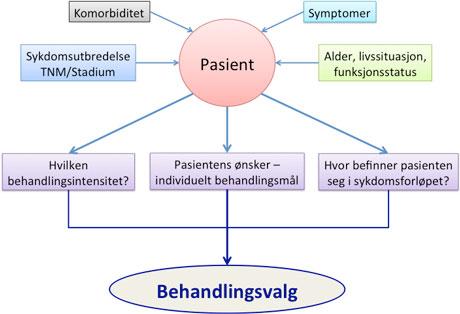 Figur 2. Viktige faktorer for prosessen i vurdering av palliative problemstillinger og individuelle behandlingsvalg som imøtekommer pasientens ønsker og behov.